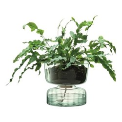 Canopy Self watering planter, H22cm, clear