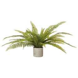 Faux potted fern plant, H47 x L105 x W105cm, green