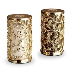 Lorel Salt and pepper shakers, gold
