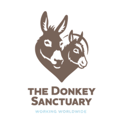 The Donkey Sanctuary donation