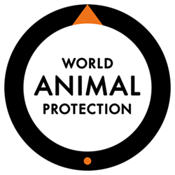 World Animal Protection donation