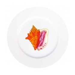Conch Flat rimmed plate, 19cm