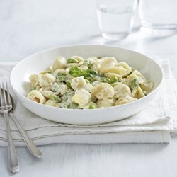 Symons Pasta bowl, white bone china