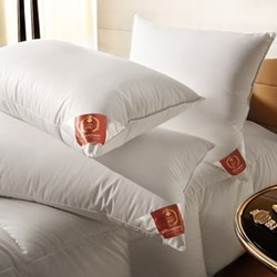 The Premier Pillow, 50 x 75cm, new white Hungarian goose down