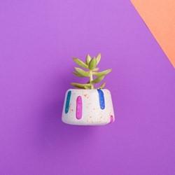 Blobs Small planter, L7.5 x W9 x H6cm, multi-colour