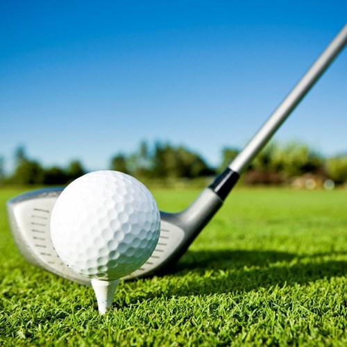 Golf lessons fund