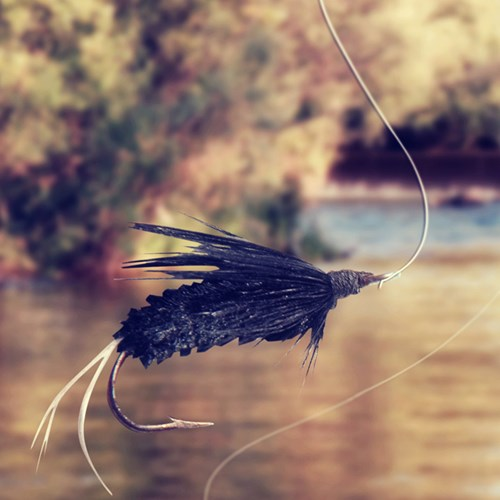 Private tutored fly fishing lesson with Halstead and Bolton fly fishing school