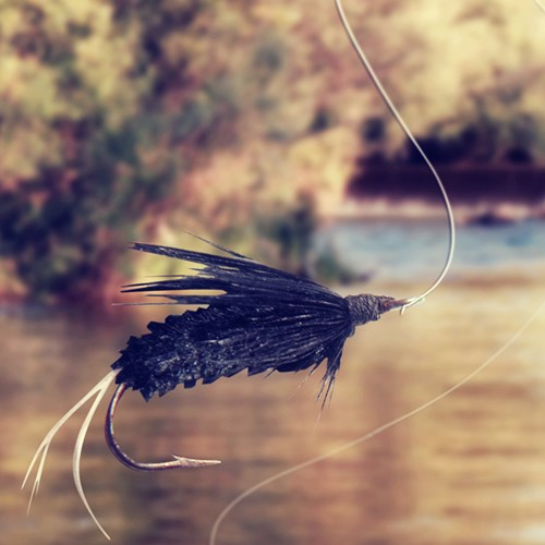 Private tutored fly fishing for two with Halstead and Bolton fly fishing school