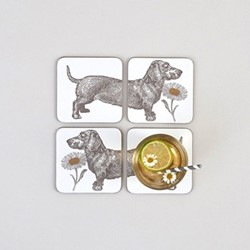Dog & Daisy Set of 4 coasters, 10 x 10cm