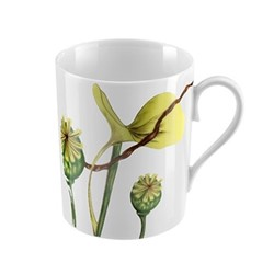 Ikebana - Envie Set of 6 mugs, 30cl