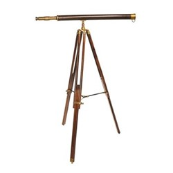Avalon Telescope, H156 x W82 x L100cm, polished bronze/wood