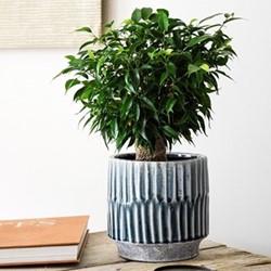 Onno Planter, H20 x W21 x D21cm, denim