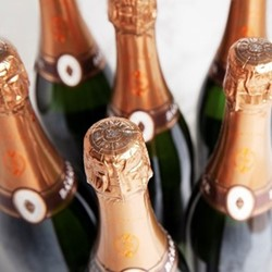 Case of Vintage Blanc de Blancs Grower Champagne, 6 bottles