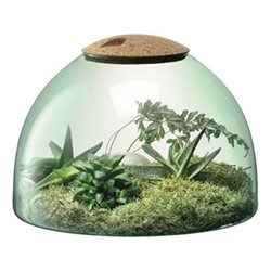 Canopy Garden terrarium, H22 x W31cm, recycled glass and cork
