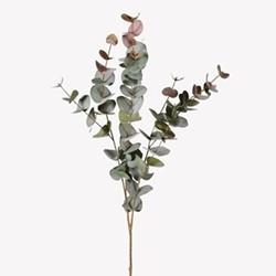 Large natural blush eucalyptus, 100cm