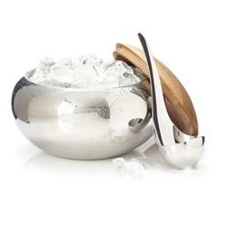 Scoop Ice bucket