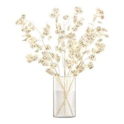 Wicker Vase/Lantern, H25 x Dia14cm, clear