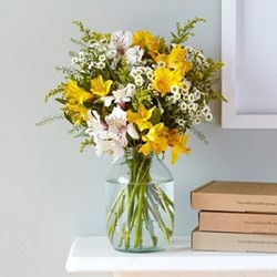 Regular Letterbox flower subscription, 6 months