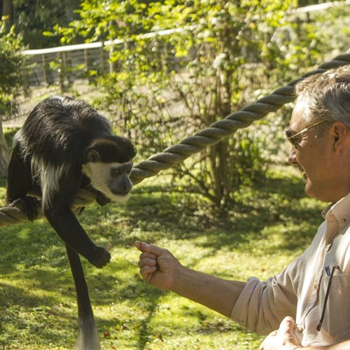 Exclusive animal encounter, day pass