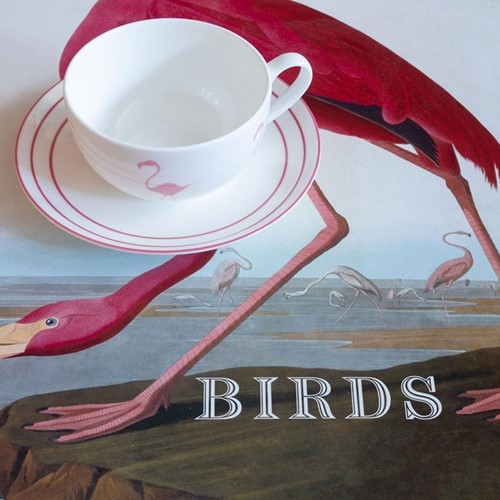 Flamingo Breakfast Cup & Saucer