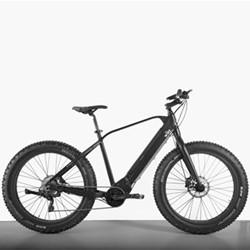 E-SUMO Off-road E-bike, 36V - 250W - 10 Speed, black