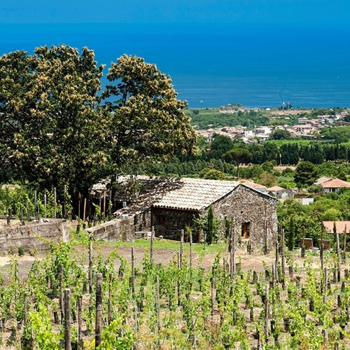 Gift Voucher towards one night at The Monaci delle Terre Nere for two, Sicily