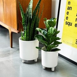 Pisa Planter, H16 x W19 x D19cm, white