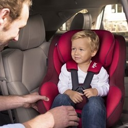 Spin 360 0+/1 Spinning car seat, H53 x W46 x D68cm, Merlot