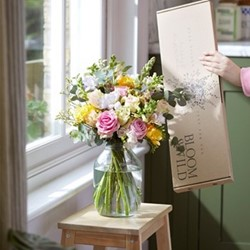 Regular Letterbox flower subscription, 12 months