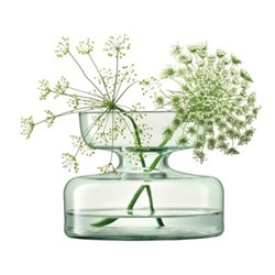 Canopy Vase, H10cm, clear