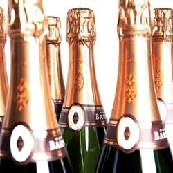 Case of Vintage Grower Champagne, 6 bottles